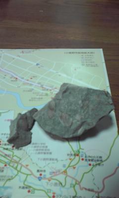 小鹿野町で化石掘り