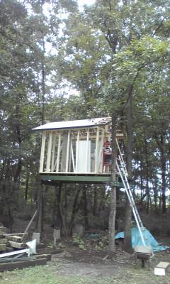 ツリーハウス屋根できた